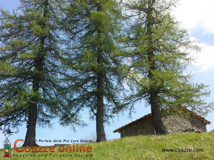L'Alpe Palè