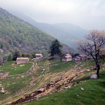 L'Alpe Palè - Coazze (TO)