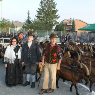 XII Festa Rurale del Cevrin 2012